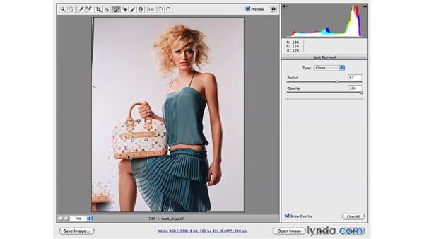 Cleaning up a portrait backdrop: Photoshop CS4 Portrait Retouching Essential Training