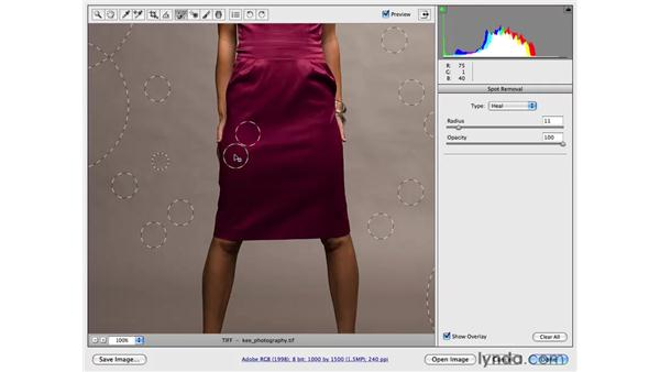 Reducing wrinkles and Camera Raw workflow: Photoshop CS4 Portrait Retouching Essential Training