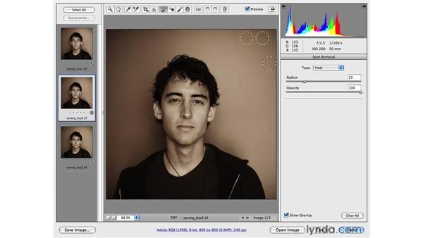 Removing lens dust from images: Photoshop CS4 Portrait Retouching Essential Training