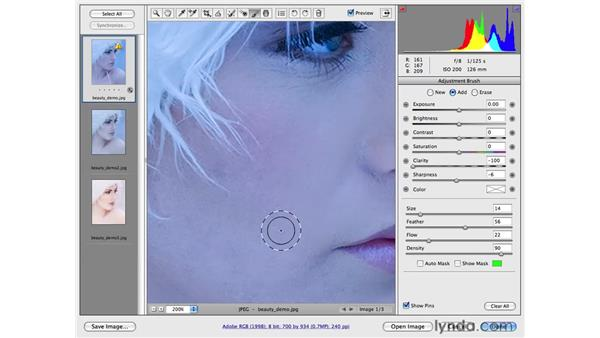 Skin cleanup and softening with Camera Raw: Photoshop CS4 Portrait Retouching Essential Training