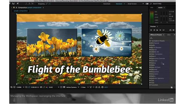 Manipulating and customizing workspaces: After Effects Apprentice 01: CC Pre-Roll