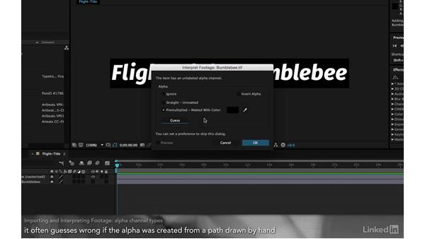 Importing and interpreting footage: After Effects Apprentice 01: CC Pre-Roll