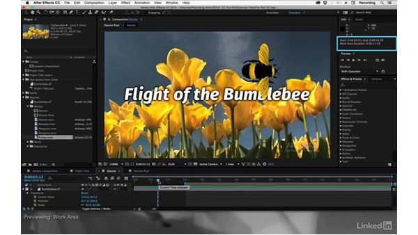 Previewing: After Effects Apprentice 01: CC Pre-Roll