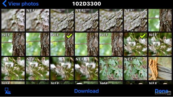 Using an optional Wireless Mobile Adapter: Up and Running with the Nikon D3200 and D3300