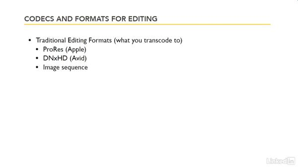 Codecs and formats for editing: Premiere Pro Guru: Transcoding Workflows