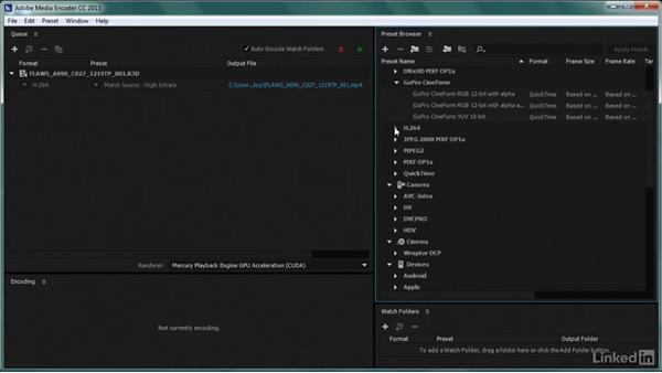 Essential transcoding settings: Premiere Pro Guru: Transcoding Workflows