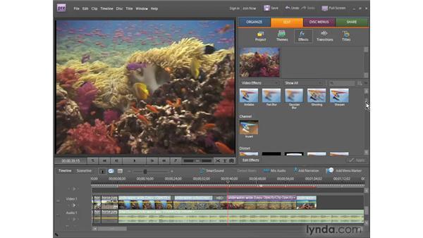 Understanding Premiere Elements 7 features: Premiere Elements 7 Essential Training