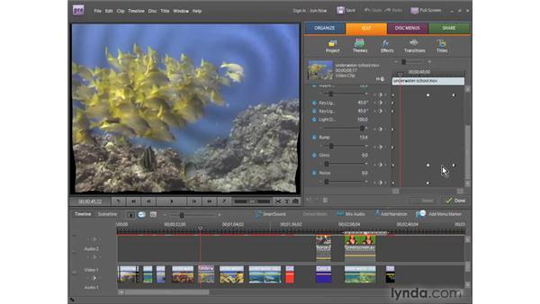 Understanding video effects: Premiere Elements 7 Essential Training