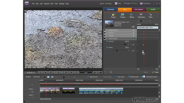 Understanding animation : Premiere Elements 7 Essential Training