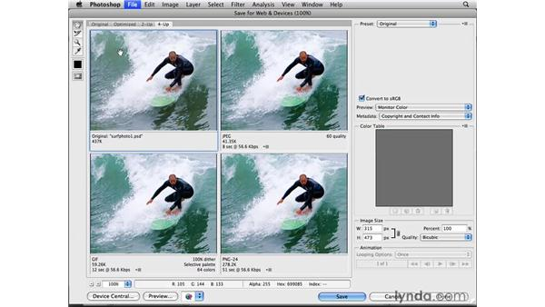 Touring the Save for Web interface: Photoshop CS4 for the Web