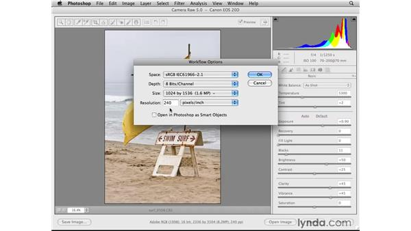 Following a web photo workflow: Photoshop CS4 for the Web