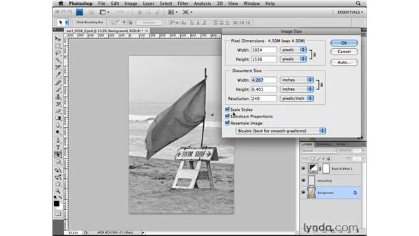 Resizing a copy for the web: Photoshop CS4 for the Web