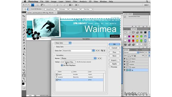 Creating graphic variations with variables: Photoshop CS4 for the Web