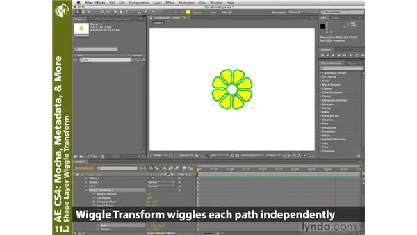 Applying the Wiggle Transform operator to shape layers: After Effects CS4 New Creative Techniques