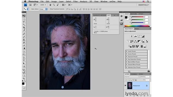Correcting color pt. 1: Determining the white and black points: Photoshop CS4 for Photographers: Desktop Printing Techniques