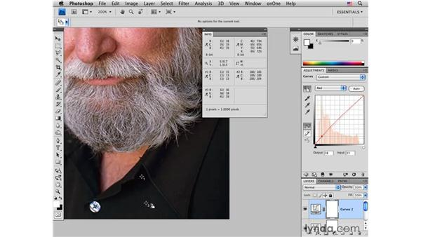 : Photoshop CS4 for Photographers: Desktop Printing Techniques