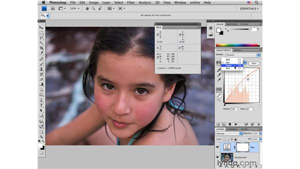 Applying skin tone color correction by the numbers: Photoshop CS4 for Photographers: Desktop Printing Techniques