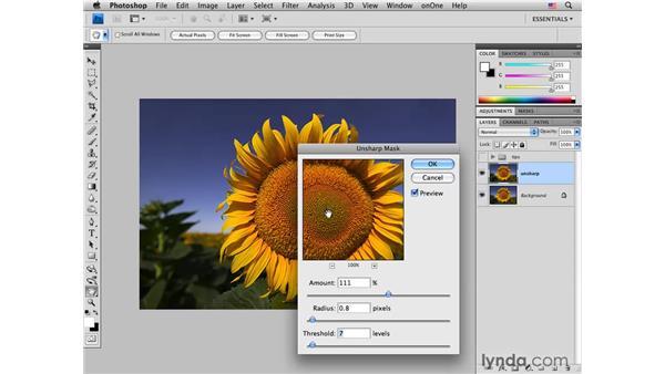 Using Unsharp Mask: Photoshop CS4 for Photographers: Desktop Printing Techniques