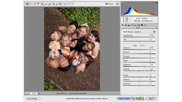 Starting with Camera Raw: Photoshop CS4 for Photographers: Desktop Printing Techniques