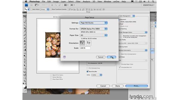 Introducing the Photoshop Print dialog: Photoshop CS4 for Photographers: Desktop Printing Techniques