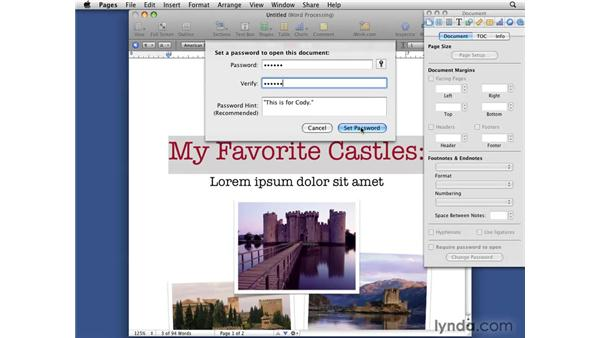Using password protection: iWork '09 New Features