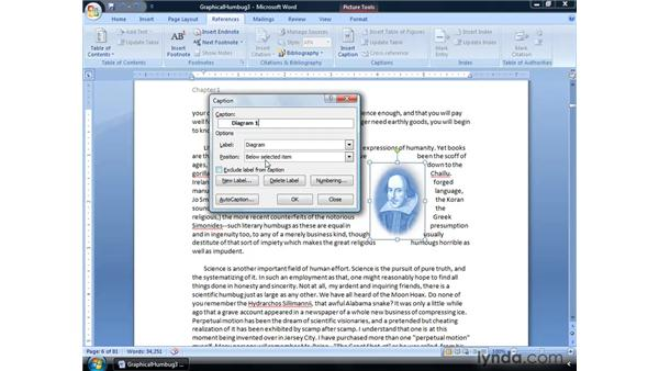 Using captions with figures: Word 2007: Formatting Long Documents