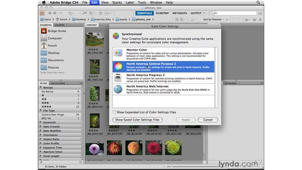 Synchronizing color management settings: Designing a Brochure (2009)