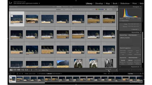 Keyword, rate, and search images: Introduction to Photography: Lightroom and Photoshop