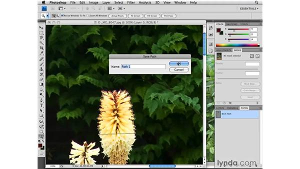 Fine-tuning images using the Pen tool and Warp: Designing a Brochure (2009)