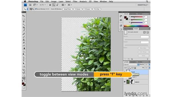 Retouching: Designing a Brochure (2009)