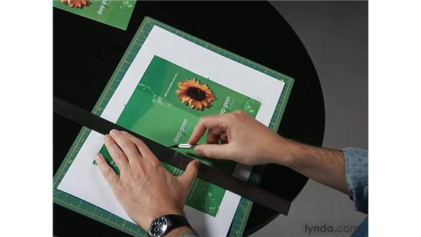 Proofing and mockup : Designing a Brochure (2009)