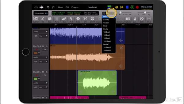 Explore the interface: Up and Running with Auria Pro