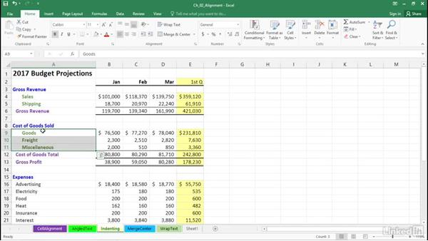 Indent data and dollar signs: Excel 2016: Advanced Formatting Techniques