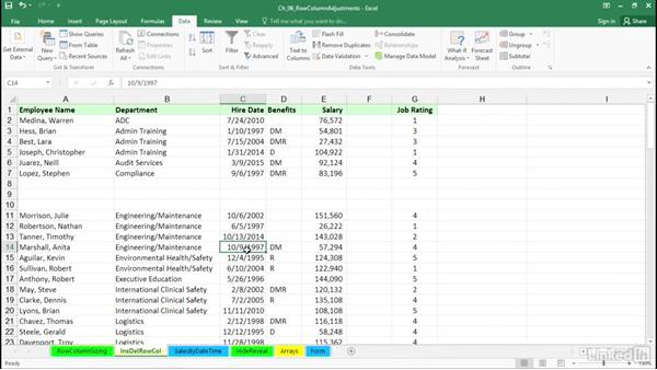 Work with rows, columns, and sheets: Excel 2016: Advanced Formatting Techniques
