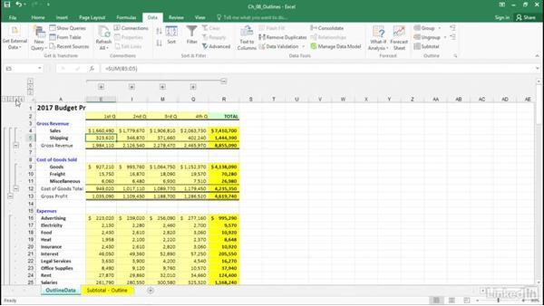 Set up data for outlines: Excel 2016: Advanced Formatting Techniques