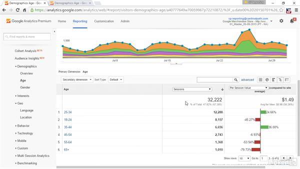 Understanding visitor demographics: Advanced Google Analytics