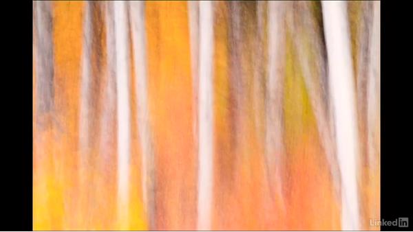 Impressionism in images with movement in telephoto: Landscape Photography with Telephoto Lenses