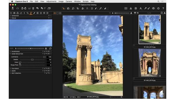 Apply noise reduction: Capture One Pro 9 Essential Training