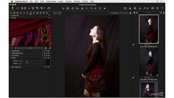 Eliminate moire pattern: Capture One Pro 9 Essential Training