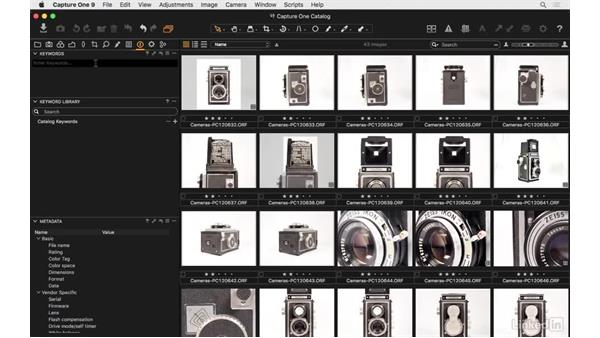 How the keyword library works: Capture One Pro 9 Essential Training