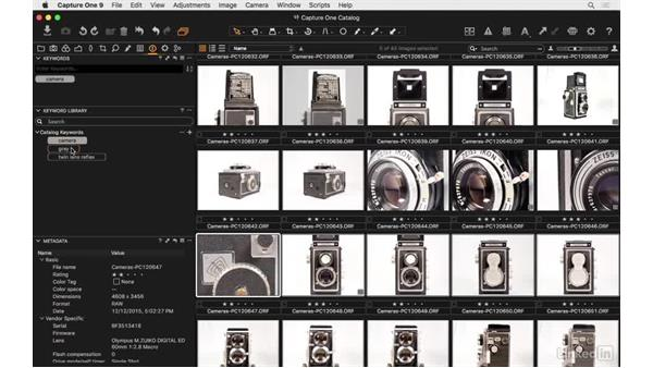 Add keywords to one or more images: Capture One Pro 9 Essential Training