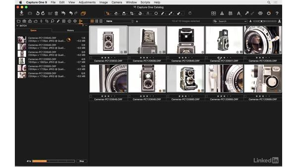 Output in multiple formats: Capture One Pro 9 Essential Training