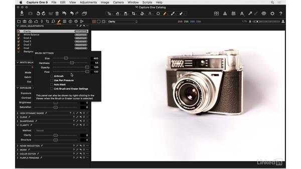 Brushing tools and their settings: Capture One Pro 9 Essential Training