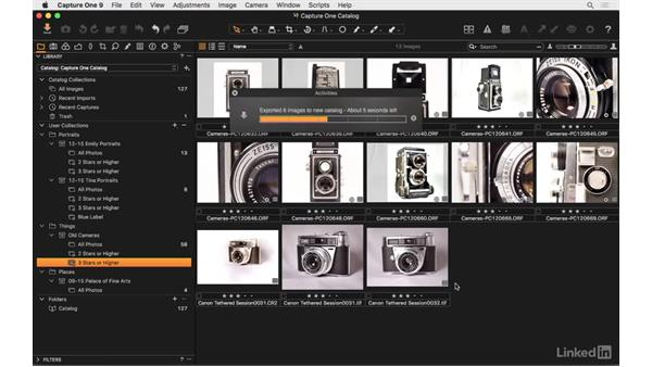 Export select images as a catalog: Capture One Pro 9 Essential Training