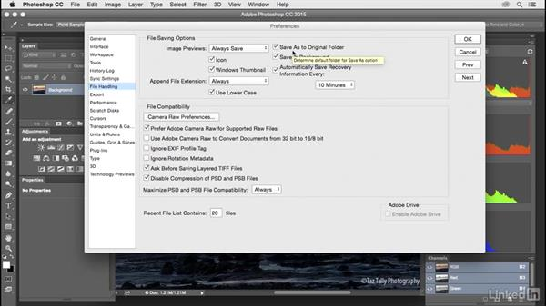 Customize Photoshop imports and exports: Customize Photoshop: A Practical Approach