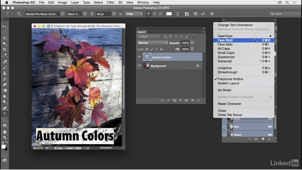 Customize and use type panels: Customize Photoshop: A Practical Approach