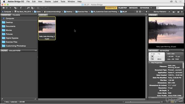Synchronize color settings across the Creative Suite: Customize Photoshop: A Practical Approach