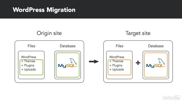 WordPress migration in three steps: Moving WordPress with WP Migrate DB and DB Pro