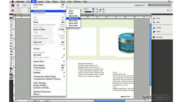 1. MultiDo: InDesign CS4: 10 Free Must-Have Plug-ins