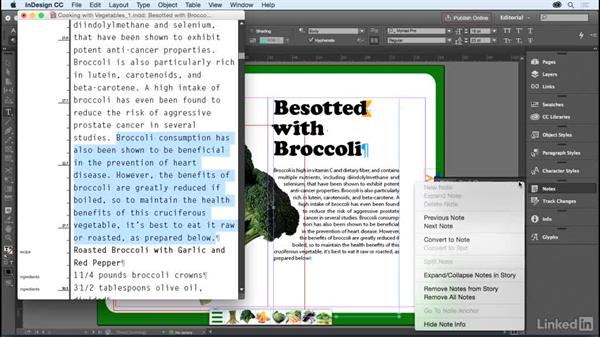 The Notes panel: InDesign for Editors